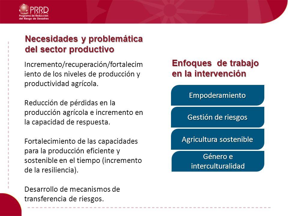 Necesidades y problemática del sector productivo