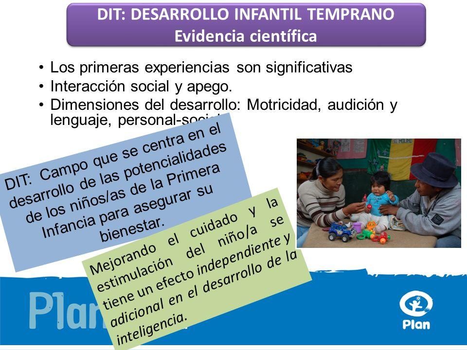 DIT: DESARROLLO INFANTIL TEMPRANO