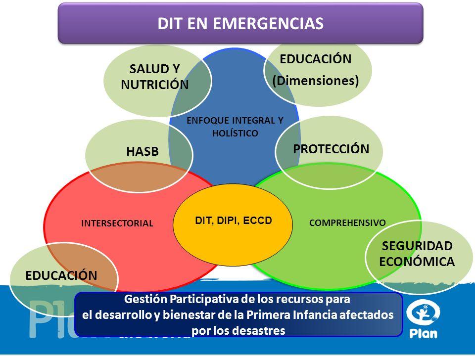 DIT EN EMERGENCIAS EDUCACIÓN SALUD Y NUTRICIÓN (Dimensiones)