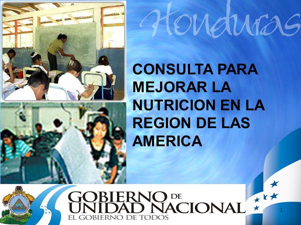 CONSULTA PARA MEJORAR LA NUTRICION EN LA REGION DE LAS AMERICA