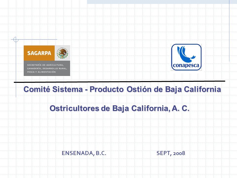 Comité Sistema - Producto Ostión de Baja California