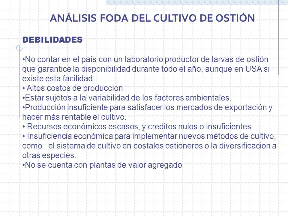 ANÁLISIS FODA DEL CULTIVO DE OSTIÓN
