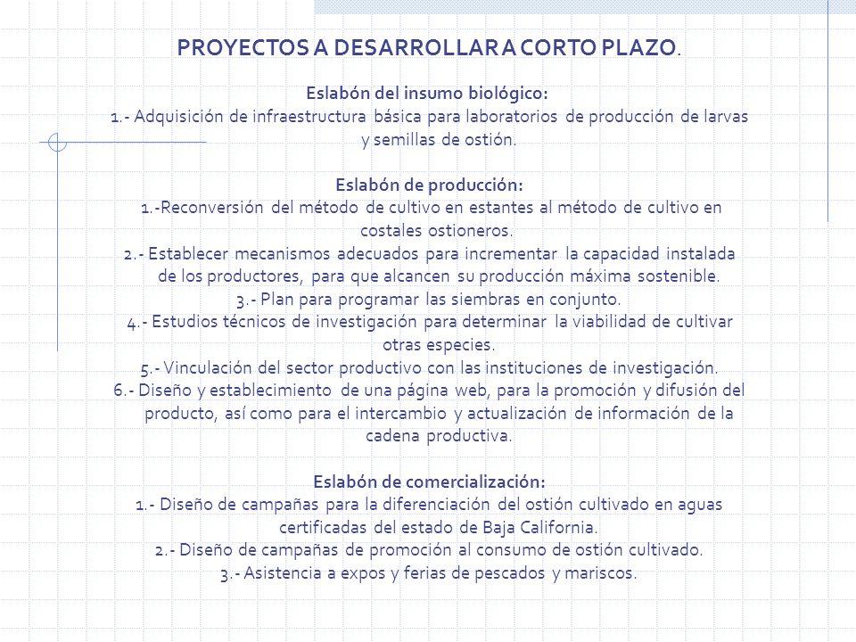Eslabón de producción: