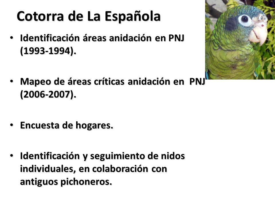 Cotorra de La Española Identificación áreas anidación en PNJ (1993-1994). Mapeo de áreas críticas anidación en PNJ (2006-2007).