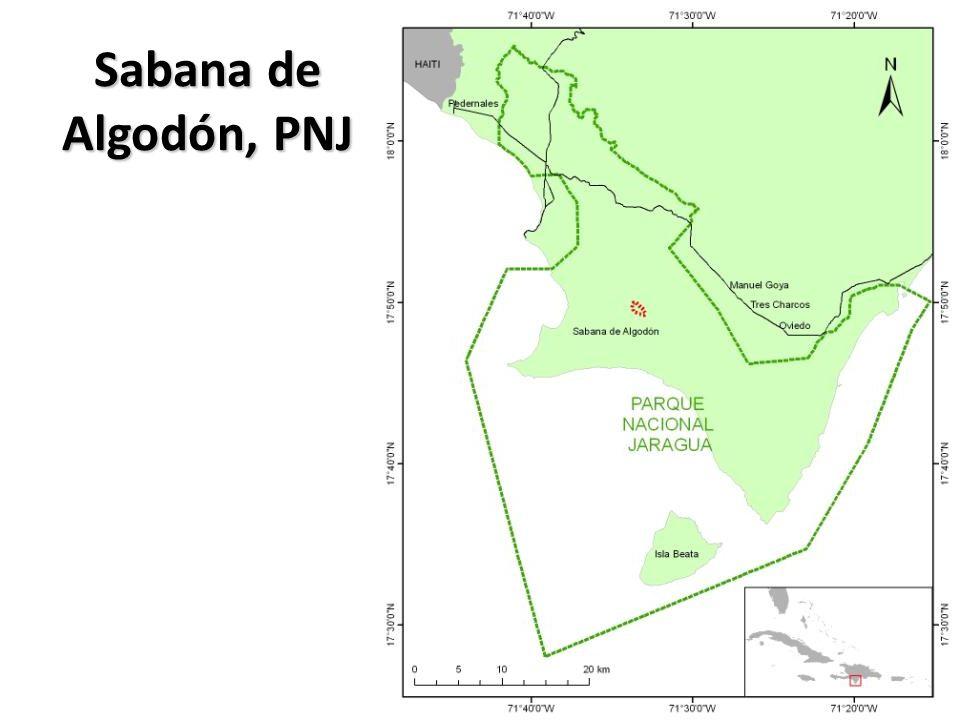 Sabana de Algodón, PNJ