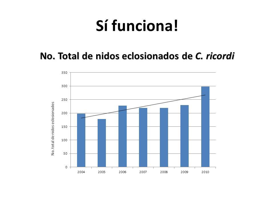 No. Total de nidos eclosionados de C. ricordi