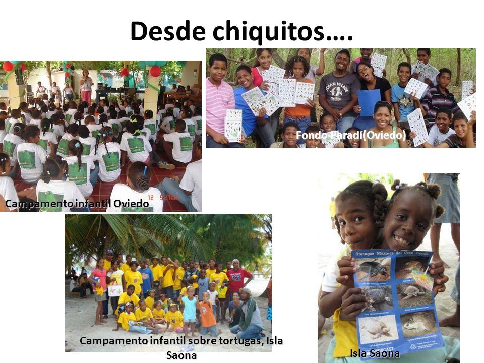 Campamento infantil sobre tortugas, Isla Saona