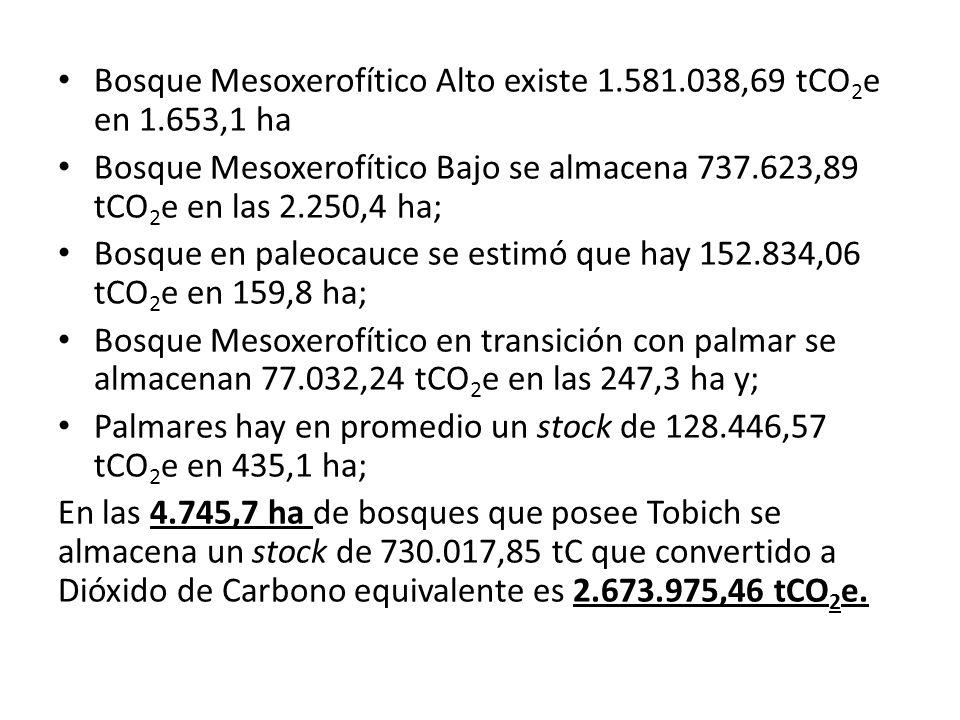 Bosque Mesoxerofítico Alto existe 1.581.038,69 tCO2e en 1.653,1 ha