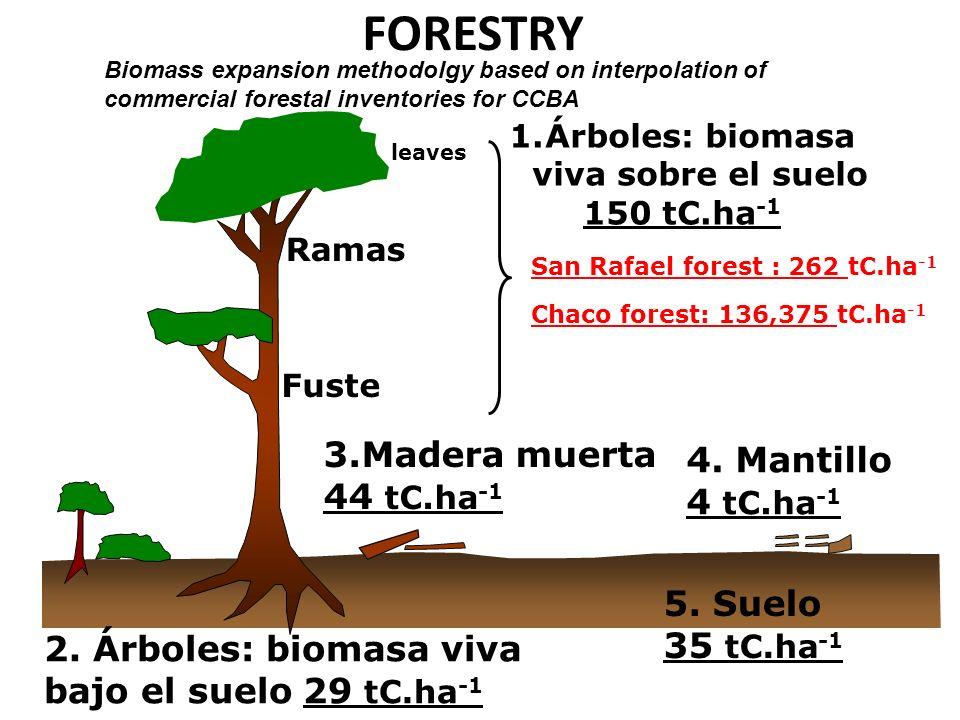 Árboles: biomasa viva sobre el suelo