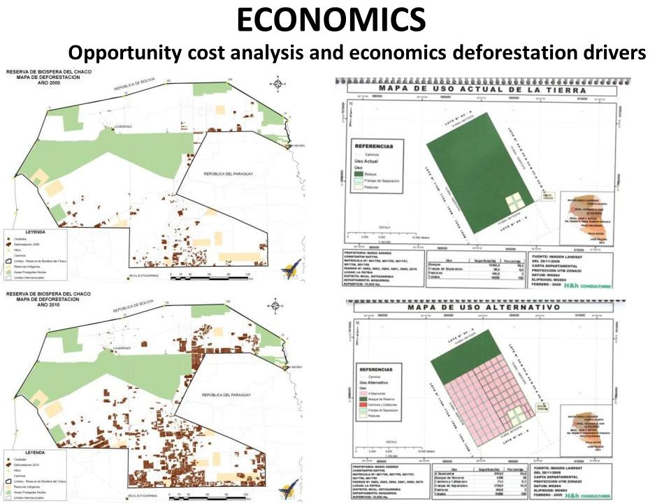 ECONOMICS Opportunity cost analysis and economics deforestation drivers