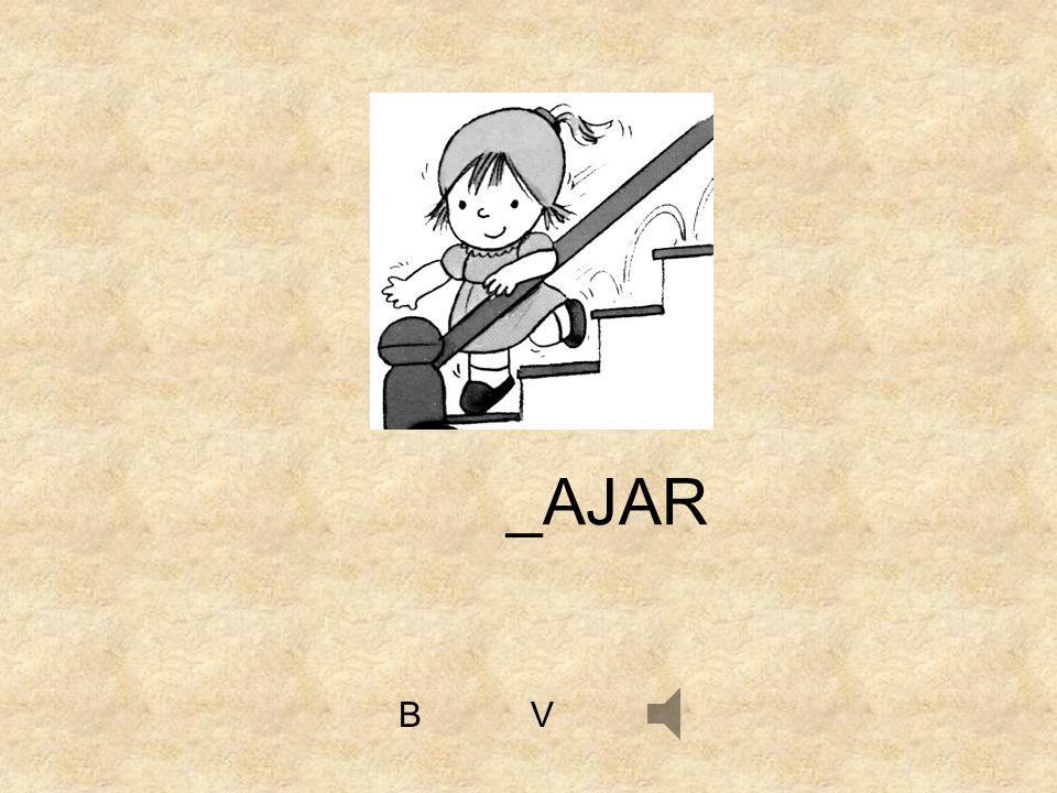 _AJAR B V
