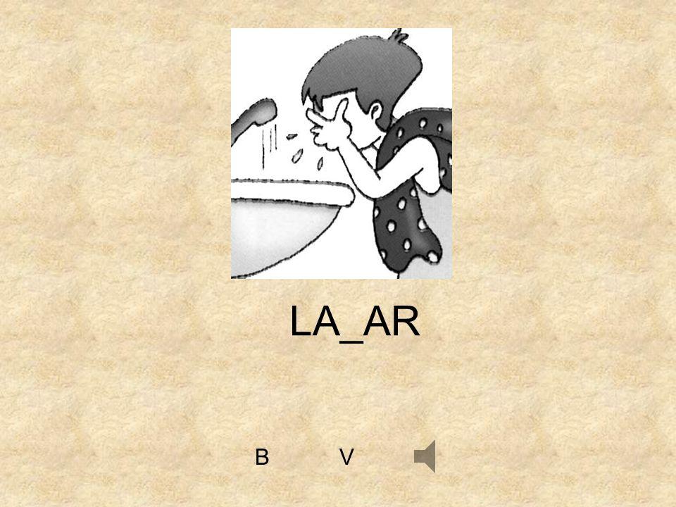 LA_AR B V