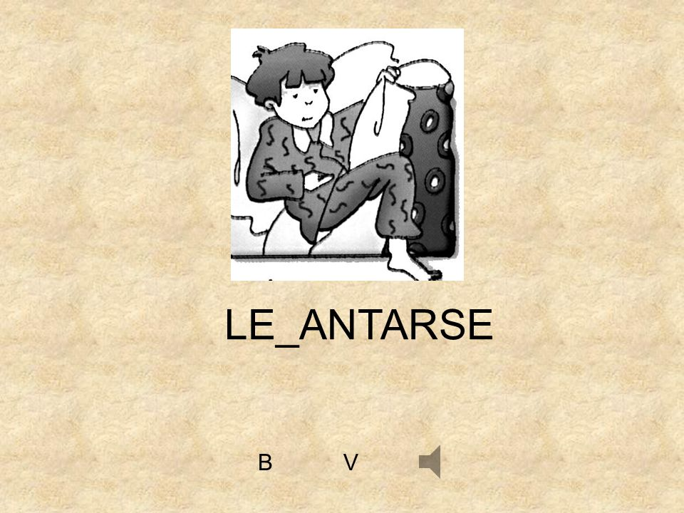 LE_ANTARSE B V