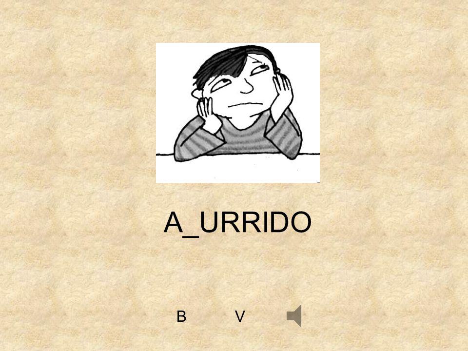 A_URRIDO B V