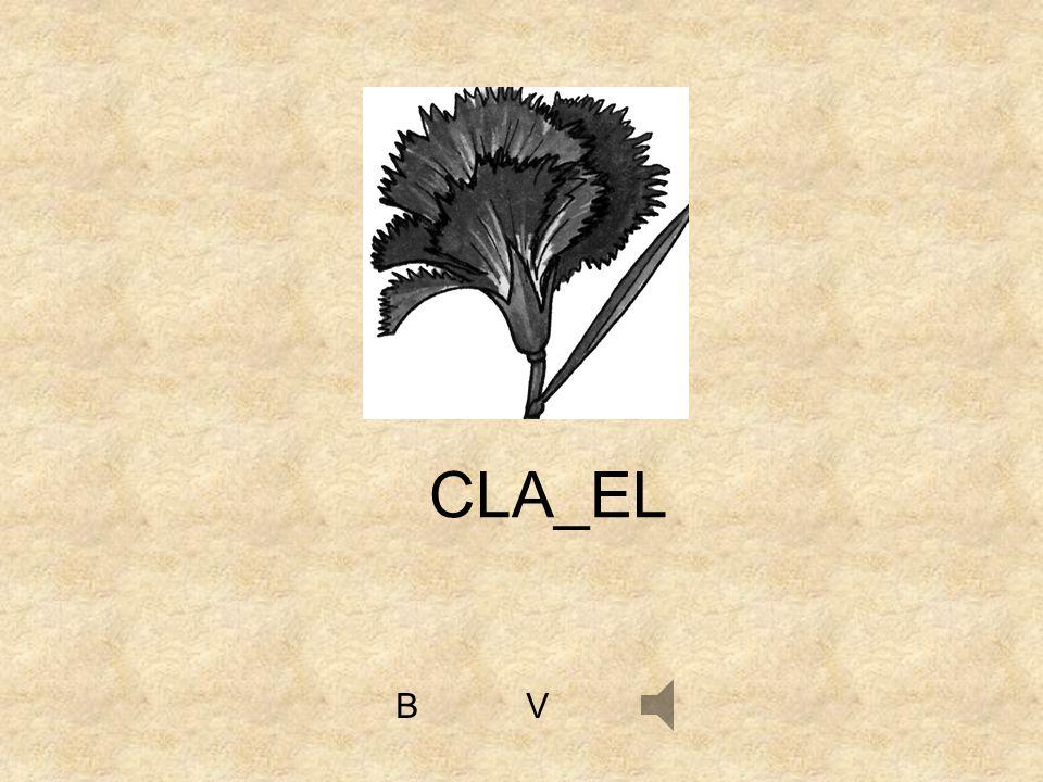 CLA_EL B V