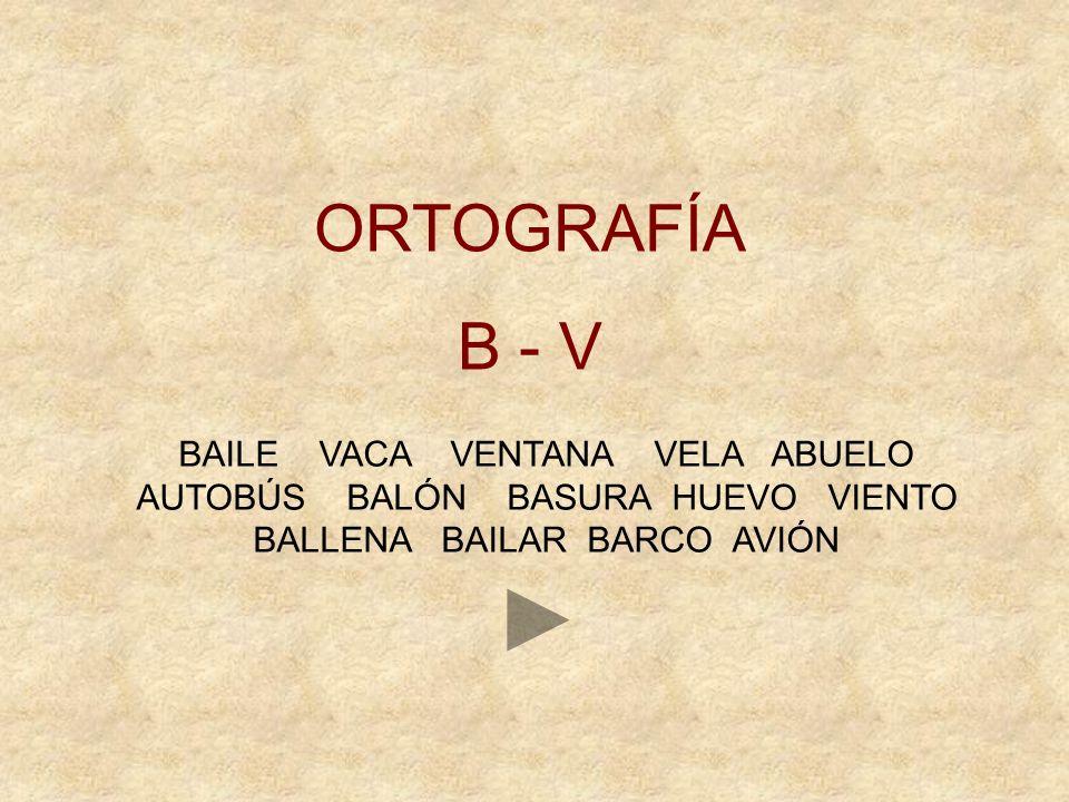 ORTOGRAFÍA B - V.