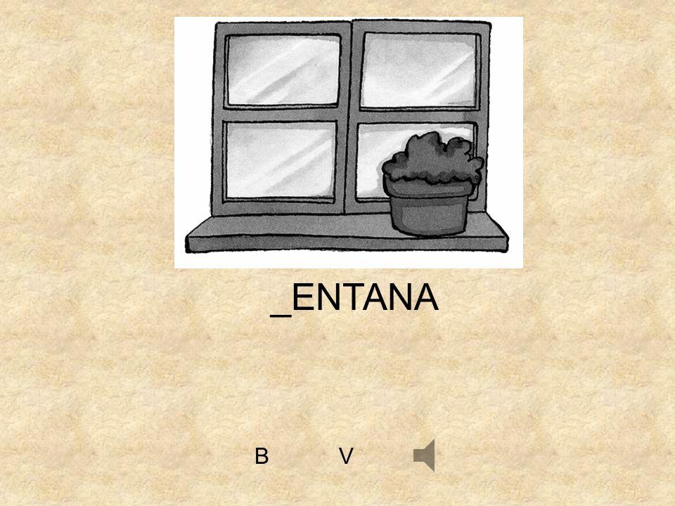 _ENTANA B V