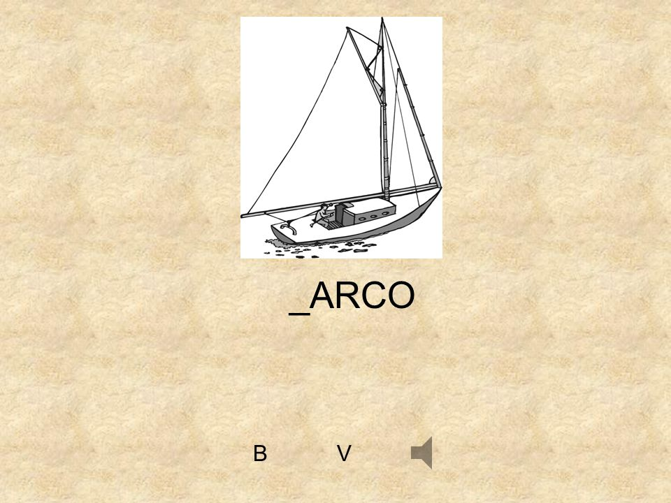 _ARCO B V