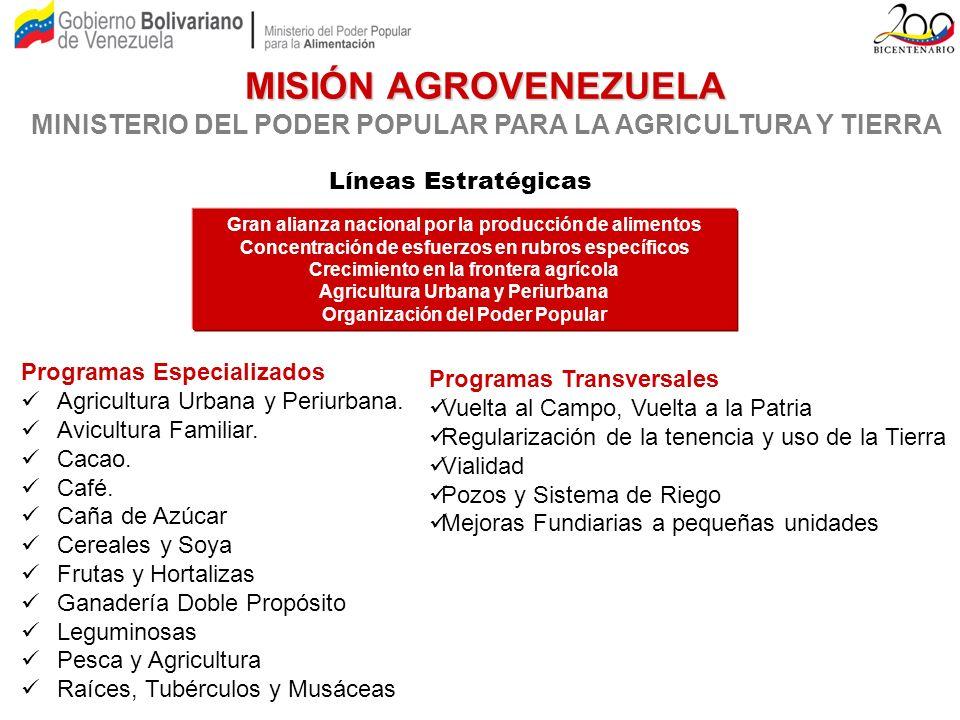 MISIÓN AGROVENEZUELA MINISTERIO DEL PODER POPULAR PARA LA AGRICULTURA Y TIERRA. Líneas Estratégicas.