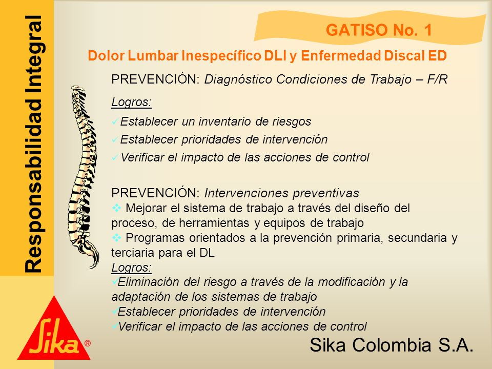 Dolor Lumbar Inespecífico DLI y Enfermedad Discal ED