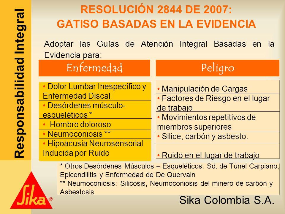 RESOLUCIÓN 2844 DE 2007: GATISO BASADAS EN LA EVIDENCIA