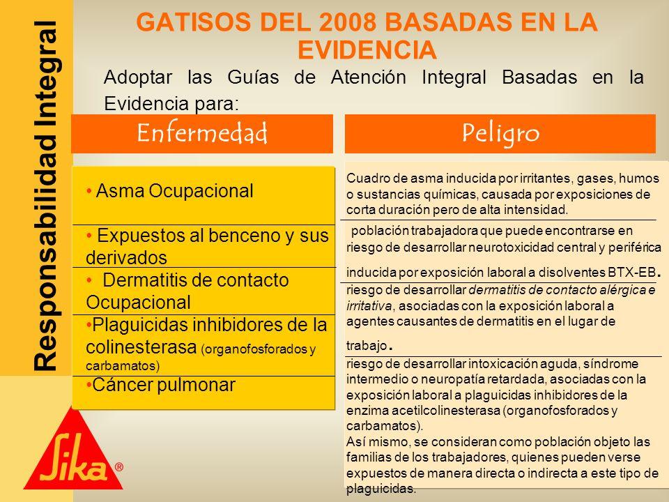 GATISOS DEL 2008 BASADAS EN LA EVIDENCIA