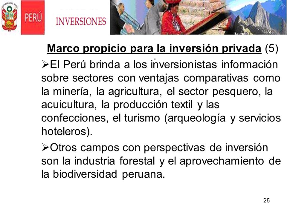 Marco propicio para la inversión privada (5)