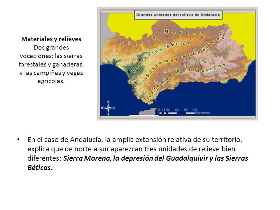 Materiales y relieves Dos grandes vocaciones: las sierras forestales y ganaderas, y las campiñas y vegas agrícolas.
