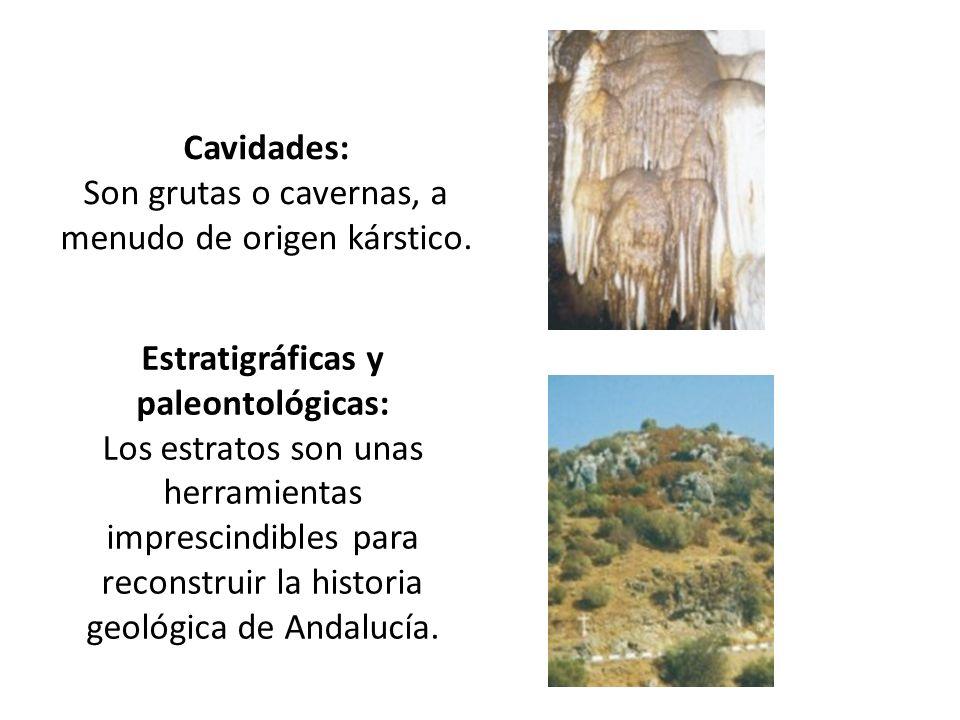 Cavidades: Son grutas o cavernas, a menudo de origen kárstico.