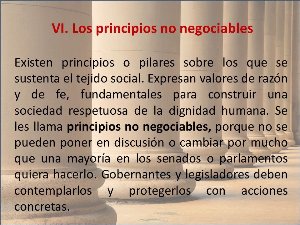 VI. Los principios no negociables