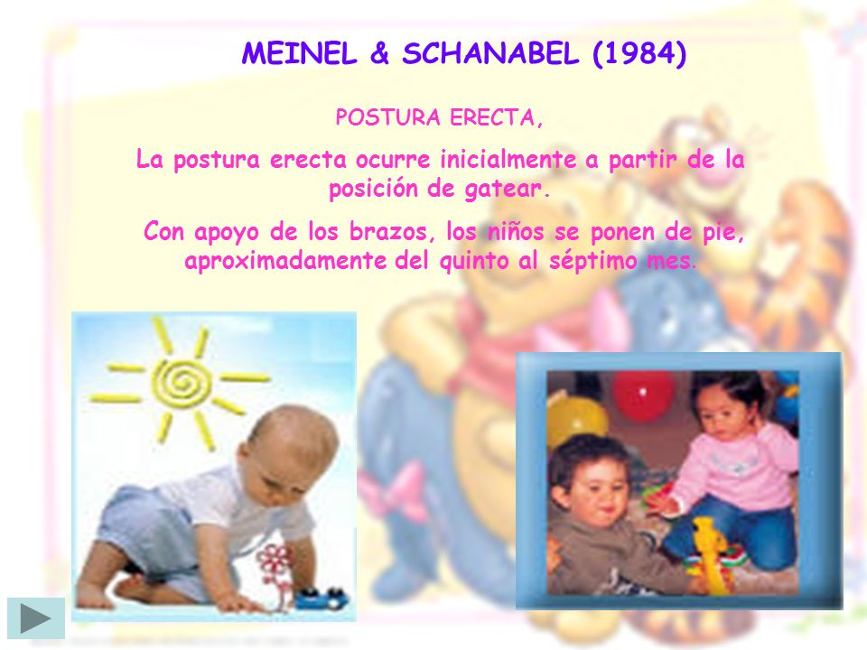 MEINEL & SCHANABEL (1984)POSTURA ERECTA, La postura erecta ocurre inicialmente a partir de la posición de gatear.