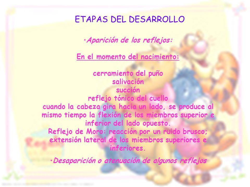 ETAPAS DEL DESARROLLO Aparición de los reflejos: