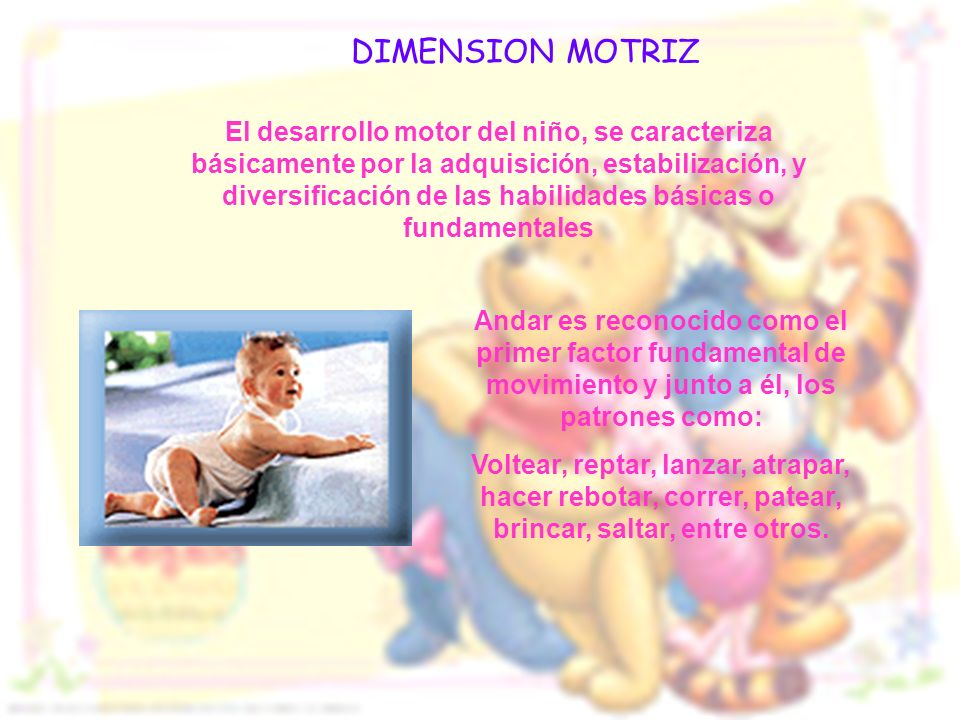 DIMENSION MOTRIZ