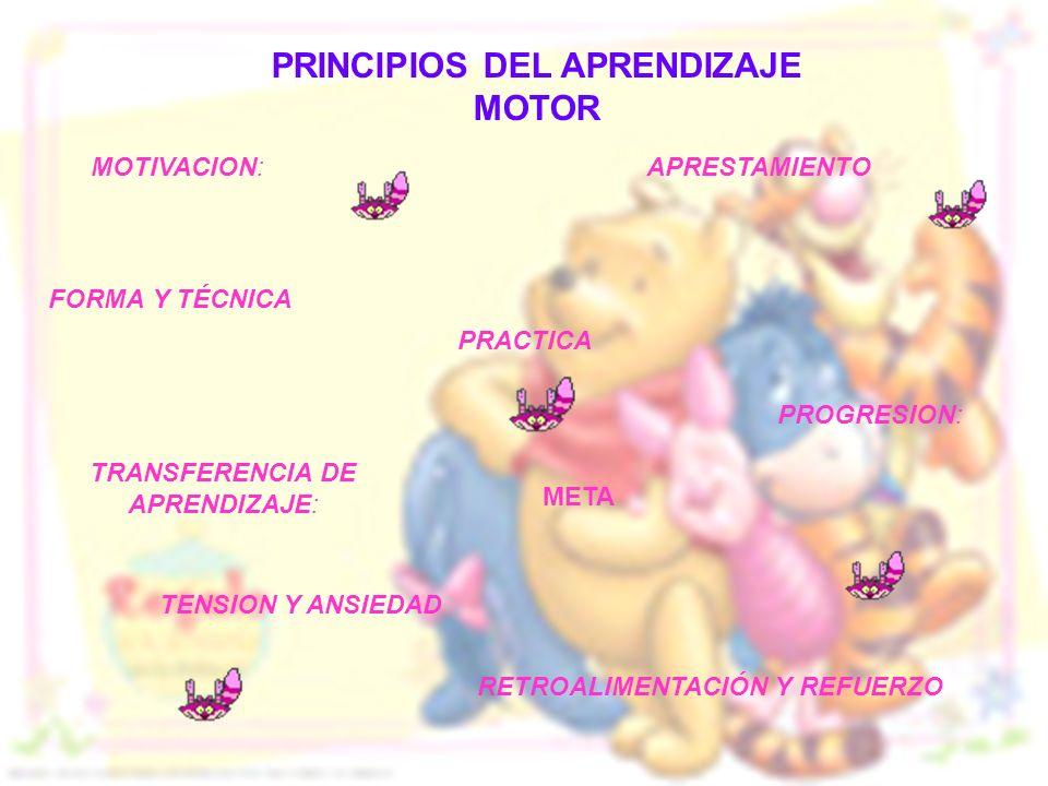 PRINCIPIOS DEL APRENDIZAJE MOTOR