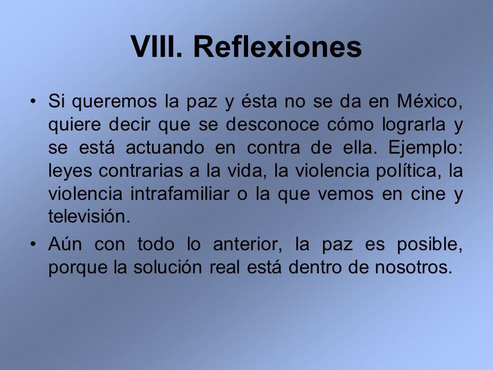 VIII. Reflexiones