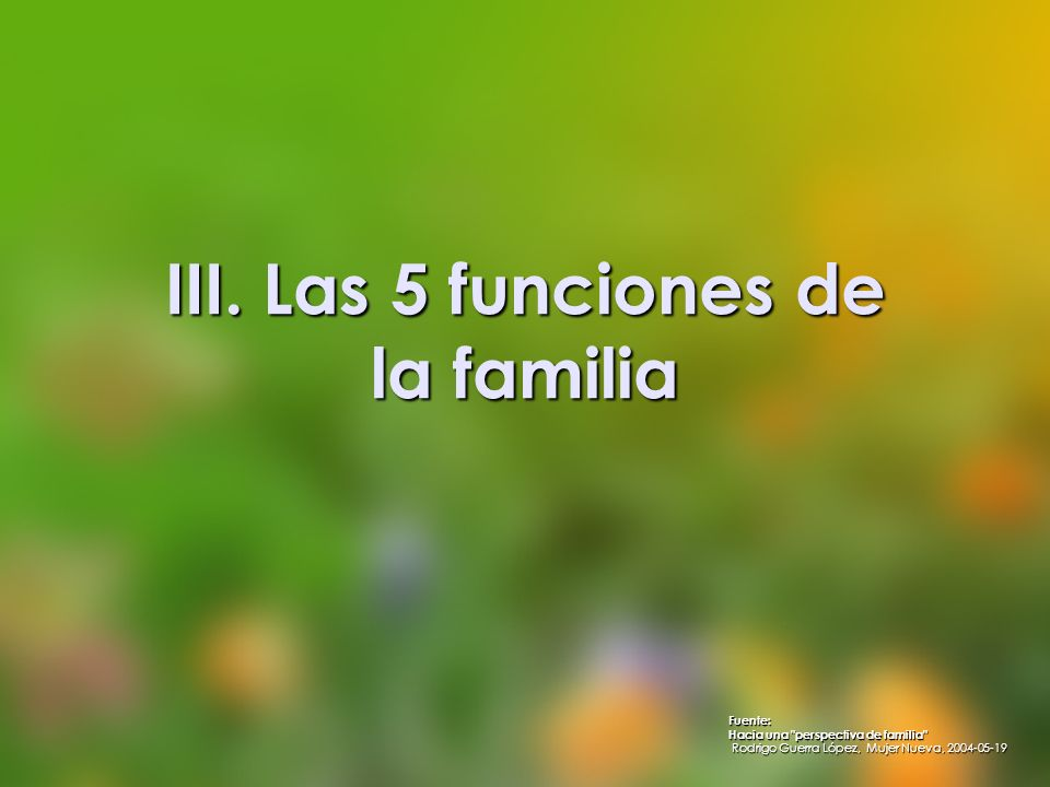 III. Las 5 funciones de la familia
