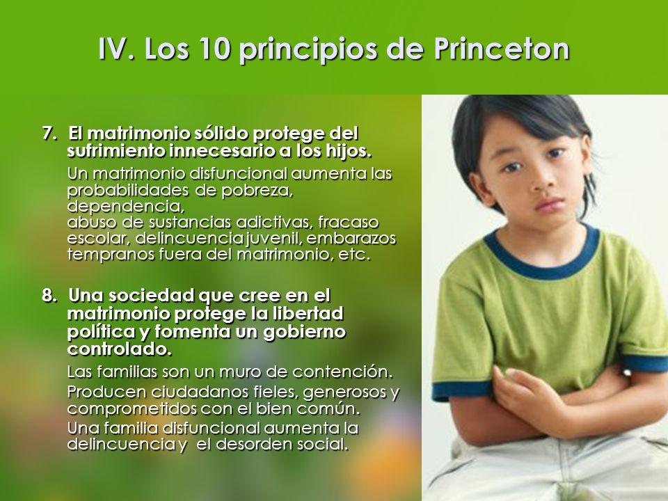 IV. Los 10 principios de Princeton