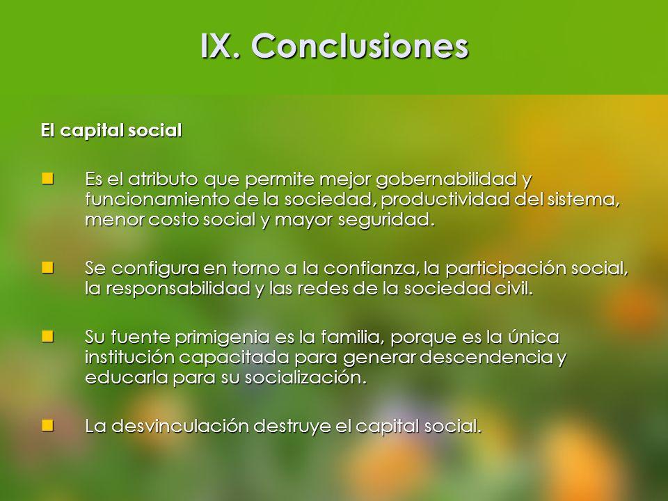 IX. Conclusiones El capital social
