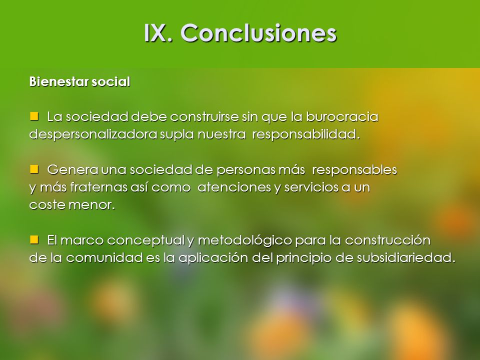 IX. Conclusiones Bienestar social