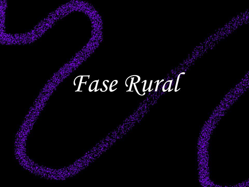 Fase Rural