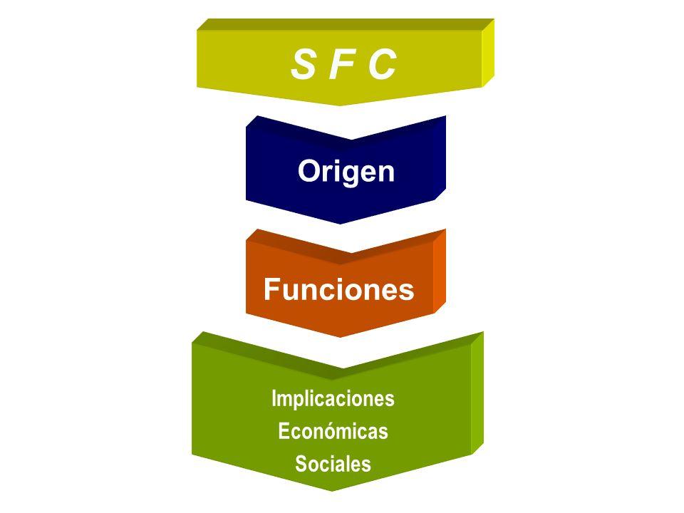 S F C Origen Funciones Implicaciones Económicas Sociales