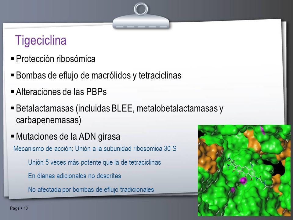 Tigeciclina Protección ribosómica