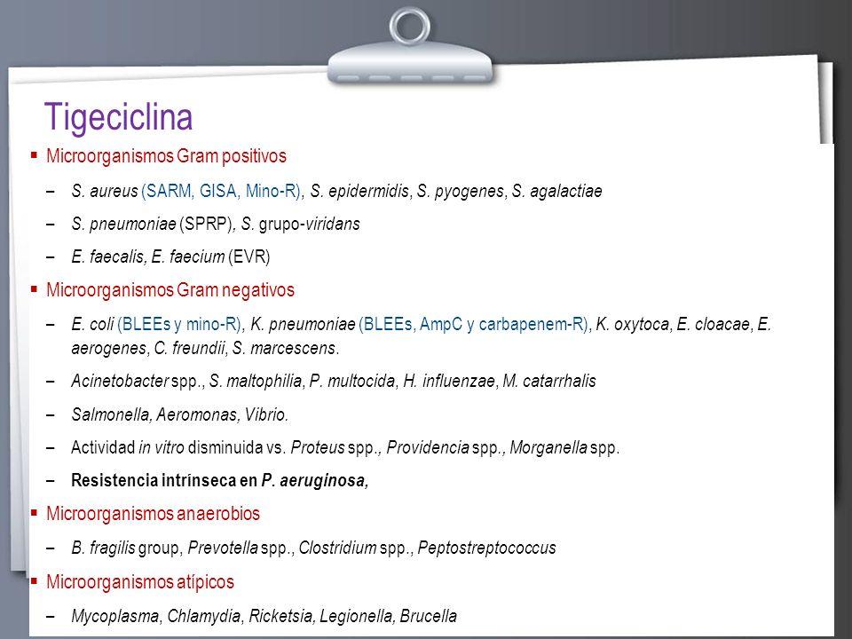 Tigeciclina Microorganismos Gram positivos