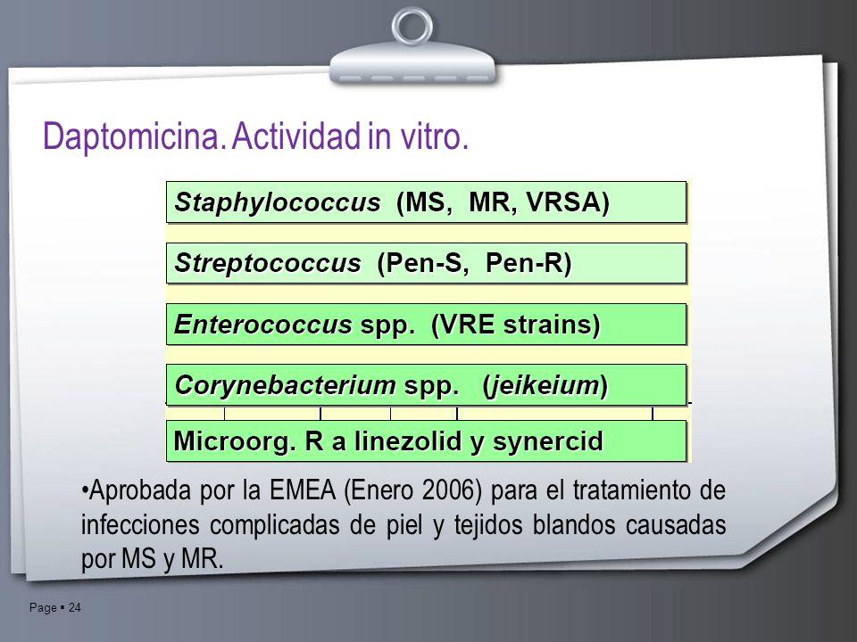 Daptomicina. Actividad in vitro.
