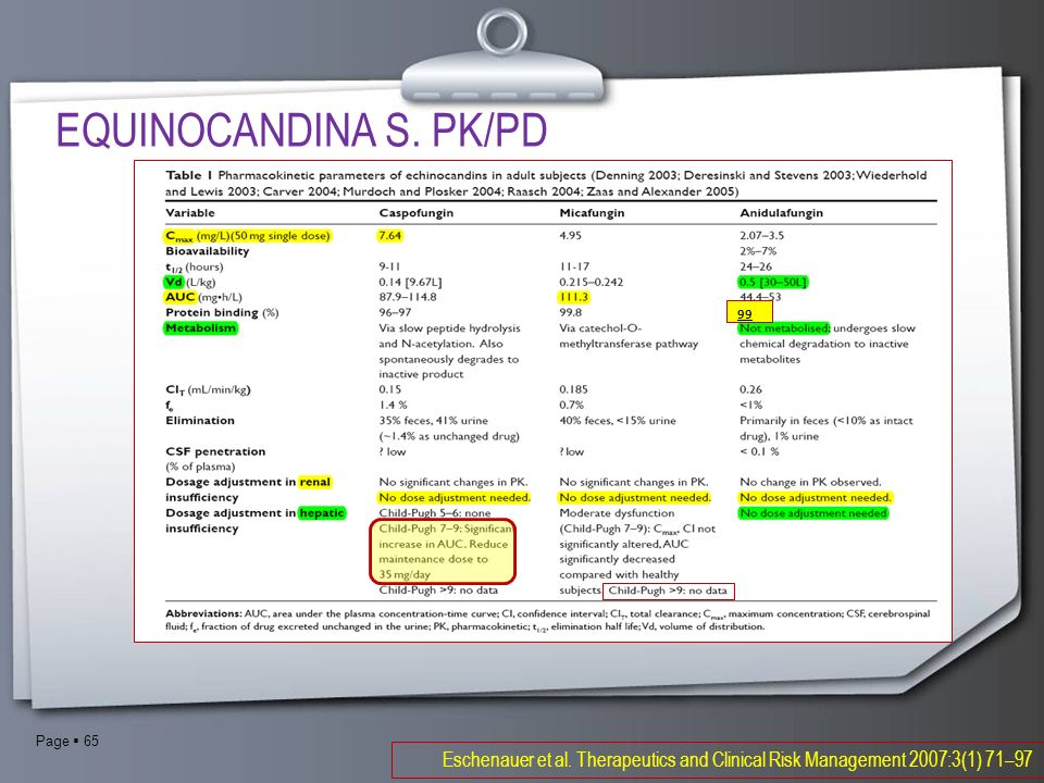 EQUINOCANDINA S.PK/PD99. Eschenauer et al.
