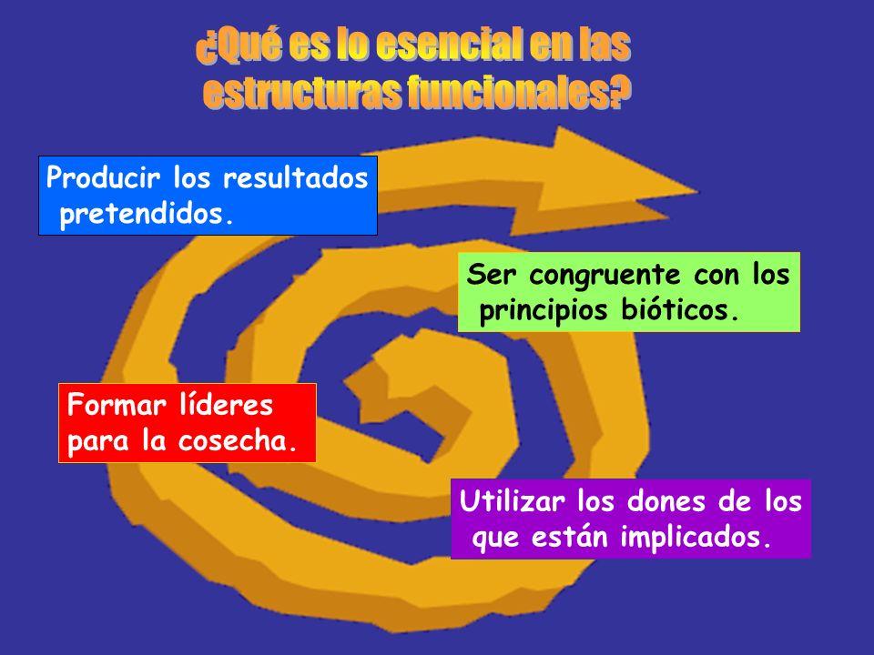 ¿Qué es lo esencial en las estructuras funcionales