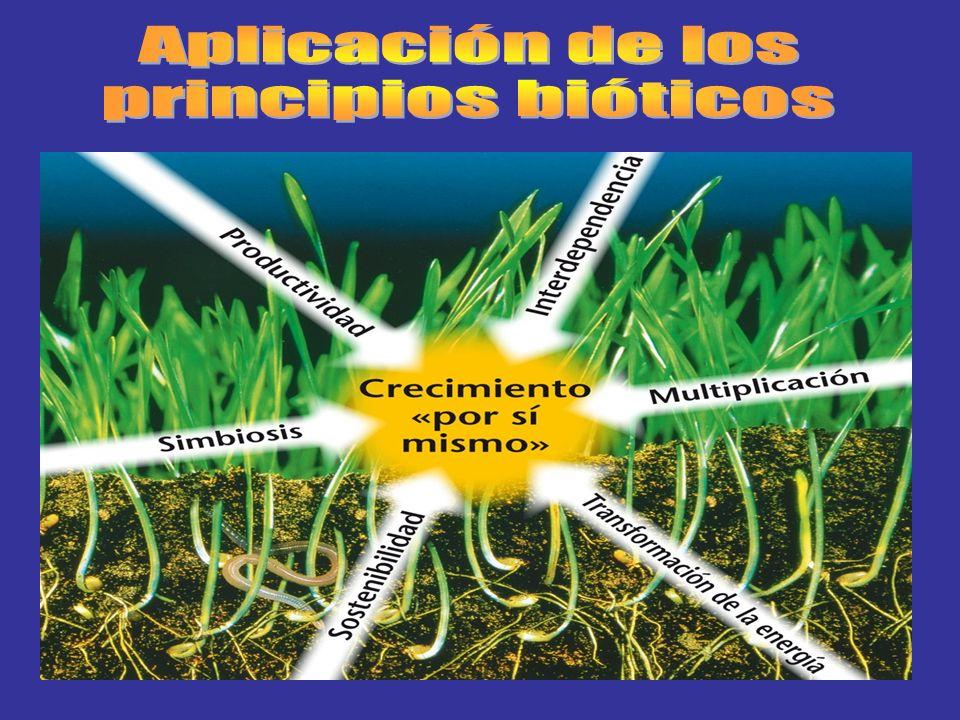 Aplicación de los principios bióticos
