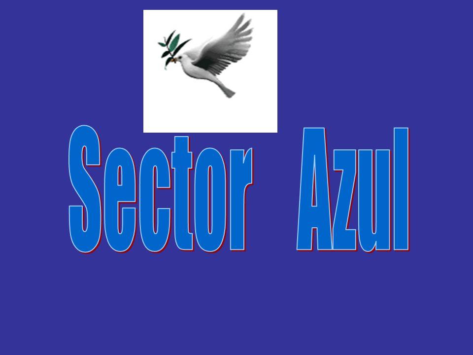 Sector Azul