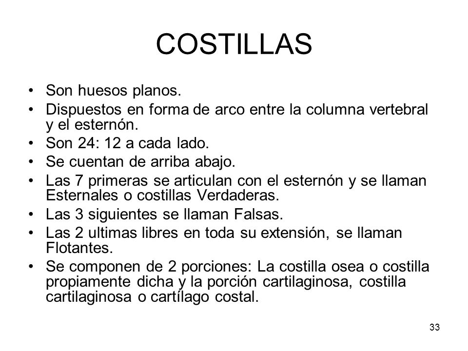 COSTILLAS Son huesos planos.