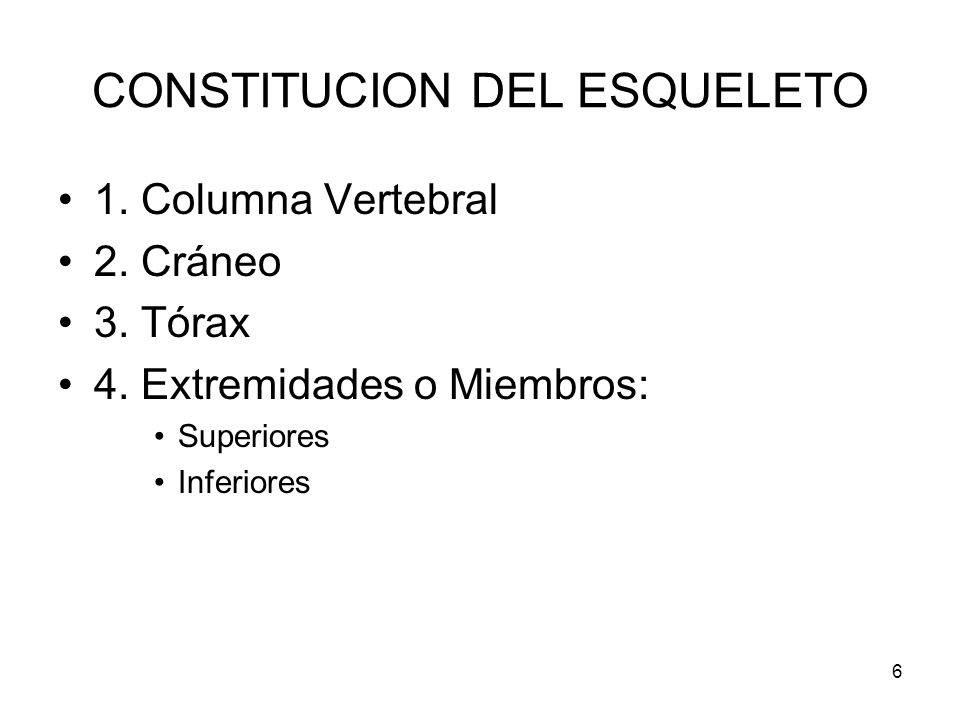 CONSTITUCION DEL ESQUELETO